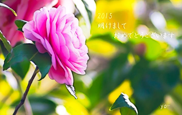 2015挨拶-IMGP2626.jpg