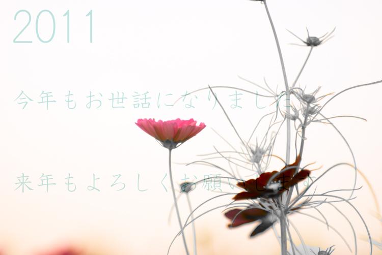 IMGP5974-Edit-Edit.jpg