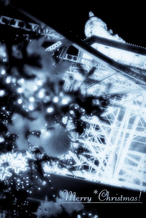 20091121-IMGP0861-Edit.jpg