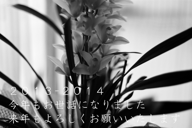 IMGP2035-Edit.jpg